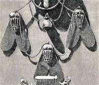 vliegen uit de grafkist van Ahhotep II